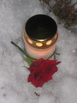 lys og rose fra storesøster